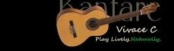 Klasična Gitara Kantare LM100