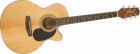 Akustična gitara JASMINE S34C