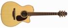 Akustična Gitara Takamine TAN76C