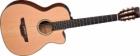 Akustična Gitara Takamine TF740FS