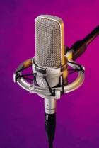 Kardioidni kondenzatorski mikrofon Audio-Technica  AT4047SVSM sa AT8449SV shock mount-om